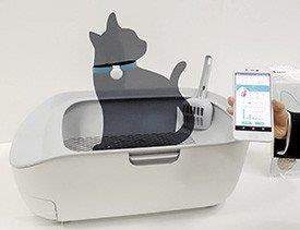 Liteira que detecta doenças em gatos