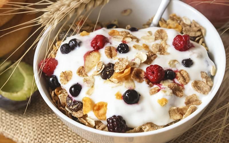 Dieta rica em fibras e iogurte associada a menor risco de cancro |  INDICE.eu - Toda a Saúde