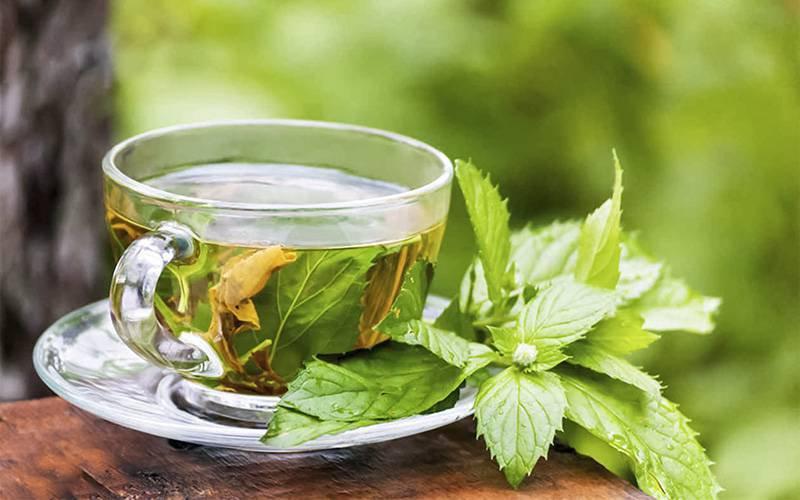 Chá de hortelã-pimenta pode aliviar dores de cabeça