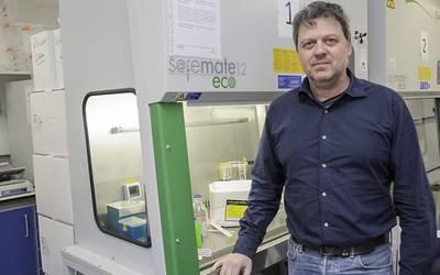 Cientista da UA vence bolsa para trabalhar na regeneração óssea